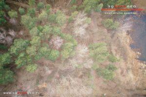 Inwentaryzacja fotogrametryczna terenów zielonych na obszarze powiatu mińskiego (1)