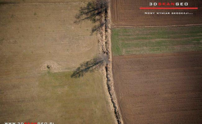 Inwentaryzacja fotogrametryczna terenów zielonych na obszarze powiatu mińskiego (2)