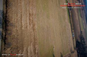 Inwentaryzacja fotogrametryczna terenów zielonych na obszarze powiatu mińskiego (3)
