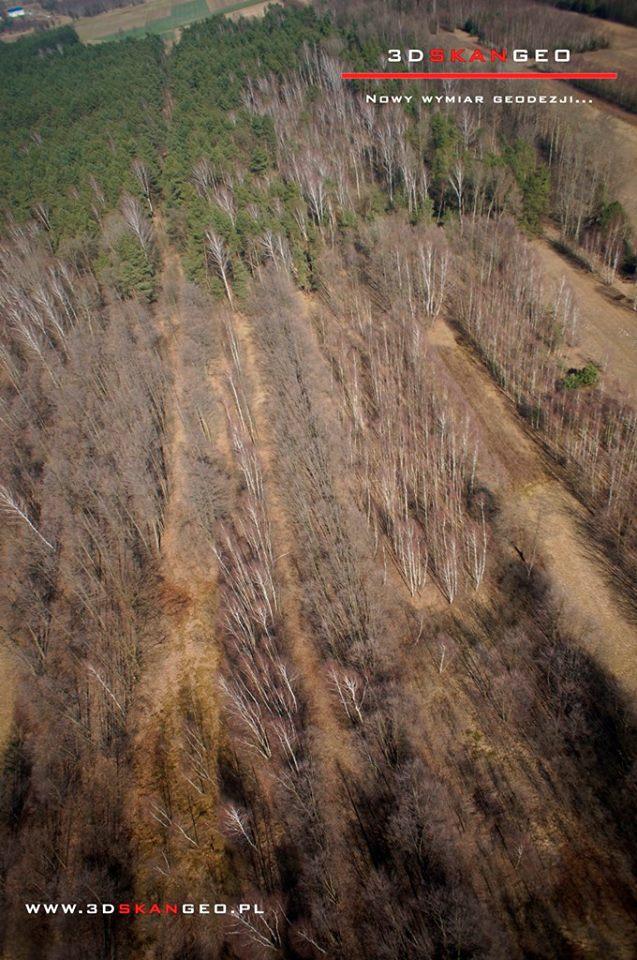 Inwentaryzacja fotogrametryczna terenów zielonych na obszarze powiatu mińskiego (7)